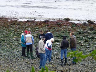 Beach Naturalists at Lincoln Park